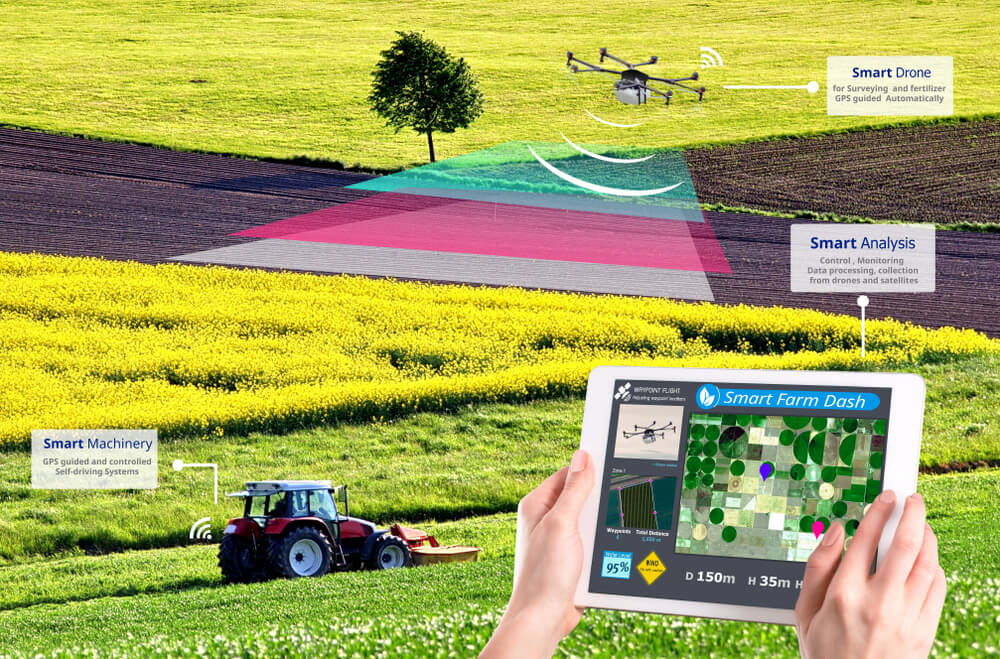 Drone Agriculture Analytics
